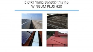 wingum plus h20